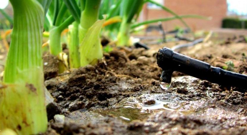 III edición concurso LEQUIA fotografía celebrar Día Mundial Agua