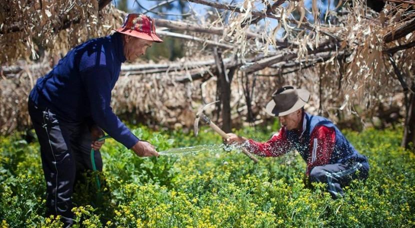 ANA Perú apoya organizaciones usuarios adecuación Ley N° 30157