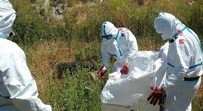 CHT inicia retirada residuos fibrocemento arroyo Ramabujas Toledo