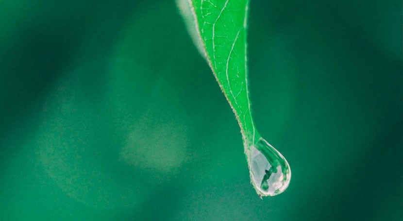 agua como principio: importancia buena gestión aguas subterráneas