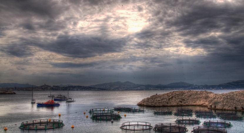 Da comienzo proyecto fomentar crecimiento sostenible acuicultura Europa