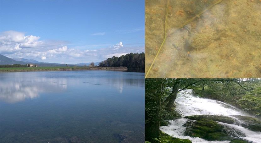 cavidad Espolla o historia lago intermitente