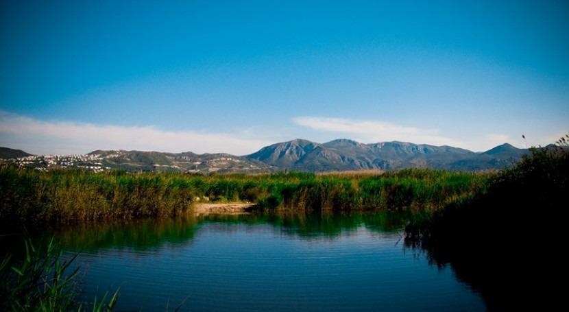 Marjal Pego-Oliva, humedal gran valor medioambiental