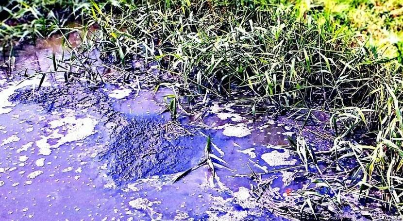 Tipos de contaminacion de aceites