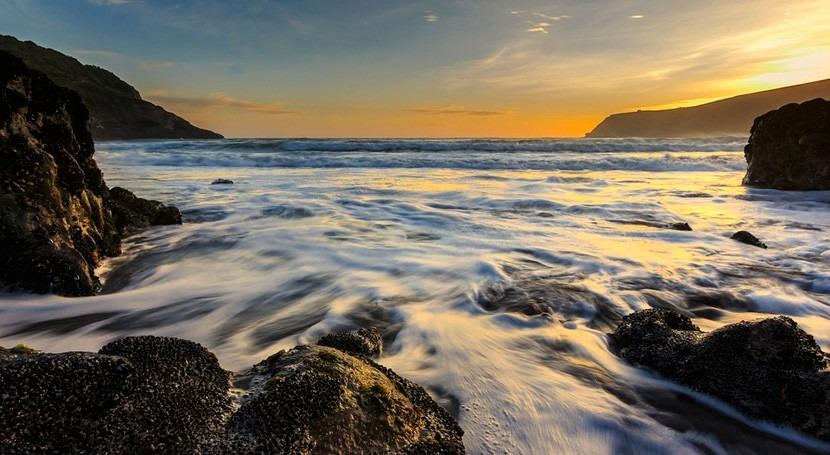 ¿Cuáles son peligros largo plazo acidificación océanos?