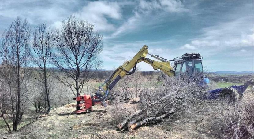 CHE inicia restauración forestal terrenos afectados incendio Luna (Zaragoza)