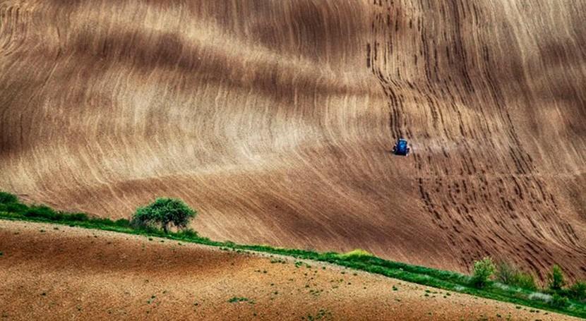 adaptación al cambio climático es clave futuro agricultura Europa