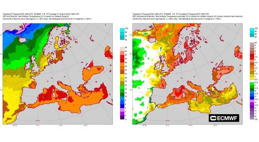 temperatura agua Mediterráneo está 3 y 4ºC encima lo normal