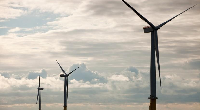 Asociaciones ecologistas urgen necesidad intensificar lucha cambio climático