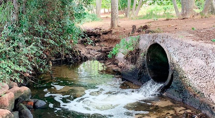 nuevo estudio demuestra que cerveza podría eliminar contaminación nitratos ríos