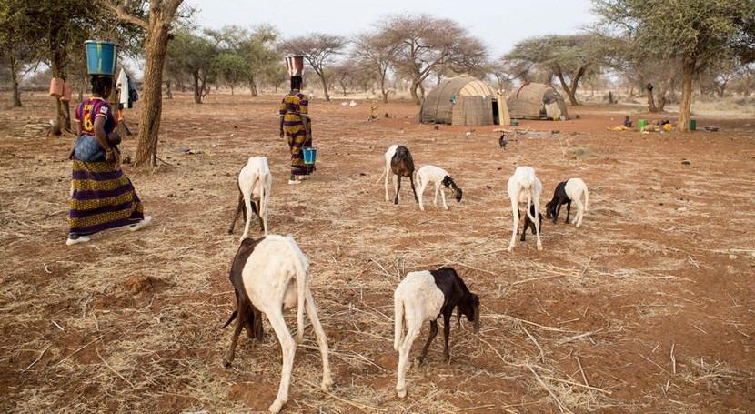 África, gestión sostenible agua y tierra