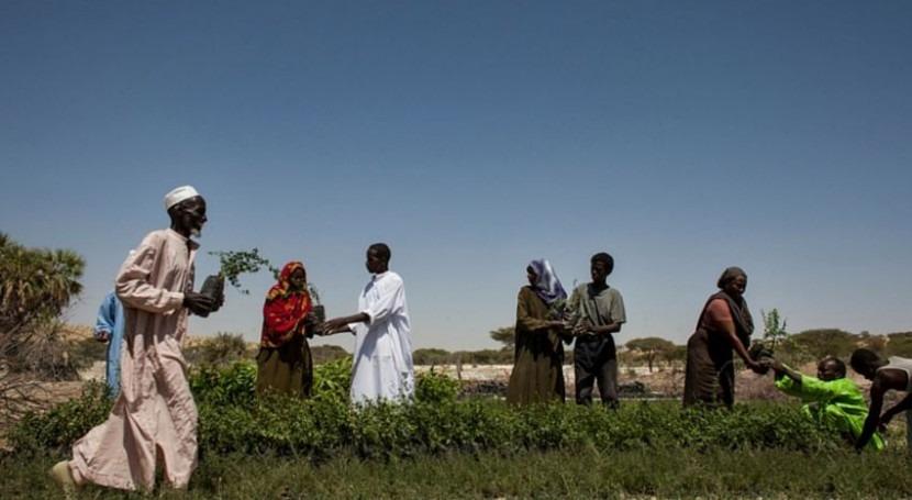 TerrAfrica: Desarrollando capacidad adaptación suelo clima cambiante