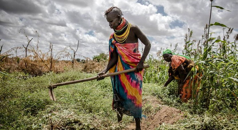 Tratado Internacional, crucial salvar plantas que desaparecen cambio climático