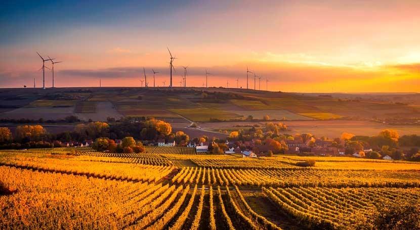 organizaciones ambientales piden que se premie agricultura respetuosa medio ambiente