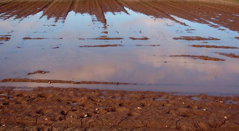 Investigadores vinculan desastres inducidos clima y seguridad alimentaria