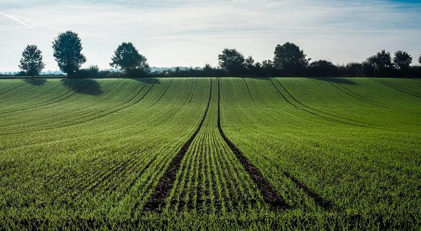 Comisión Europea propone normas impulsar reutilización agua riego agrícola