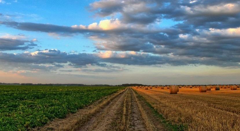 seguridad alimentaria y agricultura deben estar centro debate climático