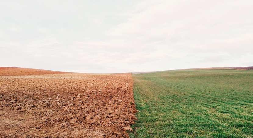 Se adelantan ayudas PAC agricultores afectados sequía Europa