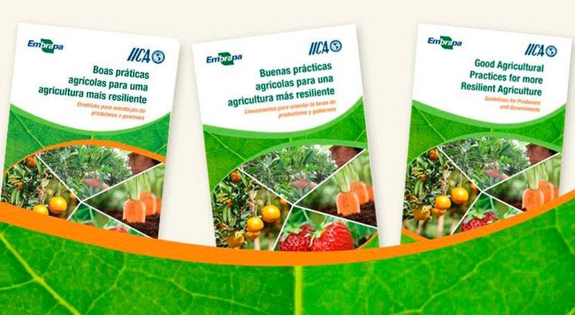 ¿Cómo mejorar resiliencia sector agrícola al cambio climático?