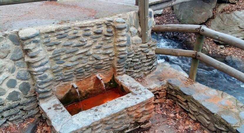 secreto crecer fuerte y sano Narila: Agua Agria