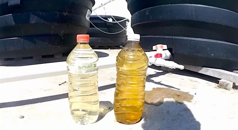 ¿Cómo tratar y reutilizar aguas residuales industria camarón?