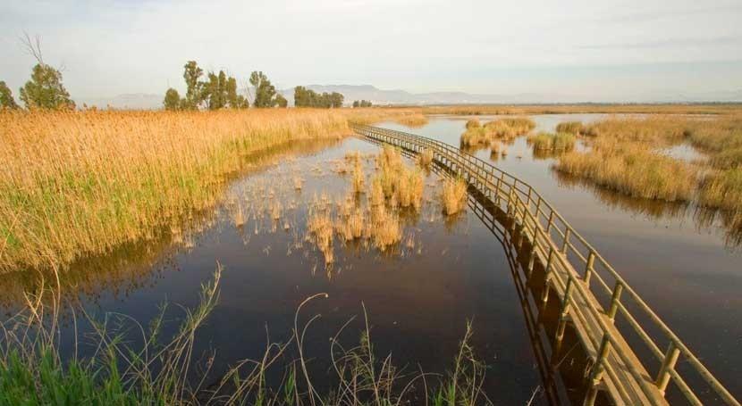 Día Mundial Agua, SEOBirdLife celebra siete años campaña Alas agua