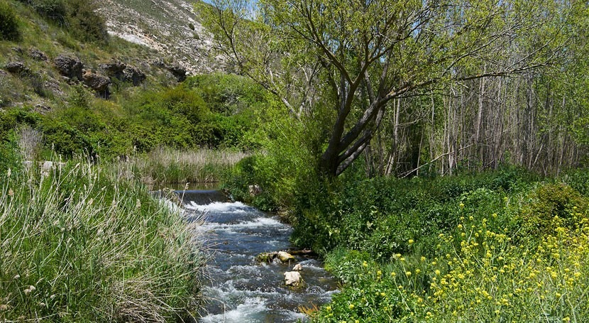 marcha acciones limpieza y mejora río Henares paso Alcalá Henares