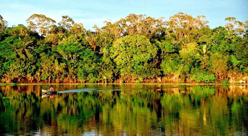 petróleo amenaza biodiversidad Amazonas