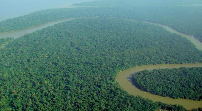 marcha proyecto pionero proteger Amazonia efectos cambio climático