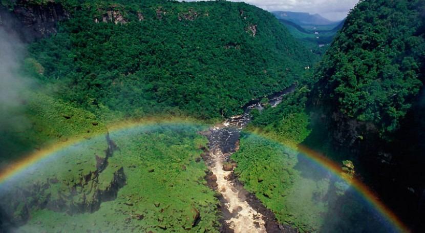 Amazonía Viva 2016: Guía futuro sostenible selva tropical más grande mundo