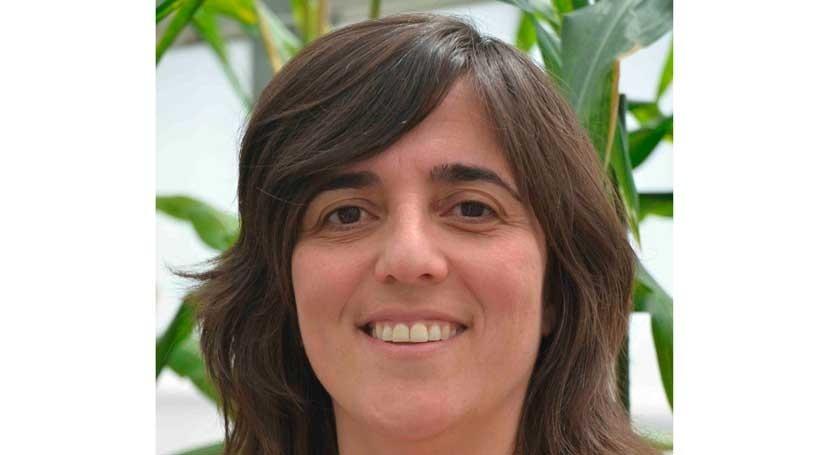 obtención cereales tolerantes sequía través biotecnología