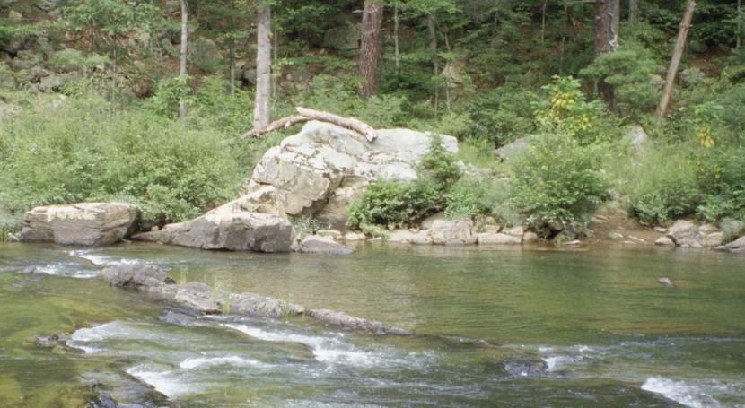 ¿Cómo afecta cambio climático arroyos montaña?