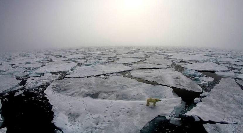 efectos cálidos durante invierno son cada vez más frecuentes Ártico