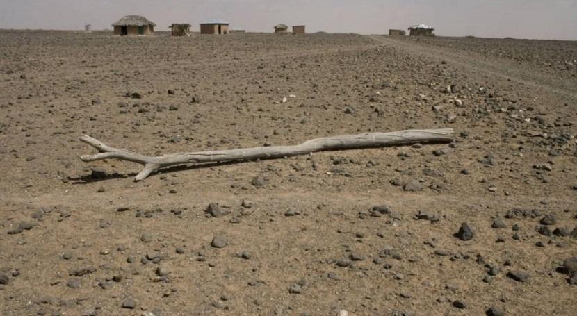 aumento desastres relacionados cambio climático amenaza seguridad alimentaria