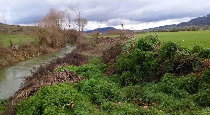 URA revegeta 1800 metros riberas río Ihuda (Ayuda) paso Berantevilla, Álava