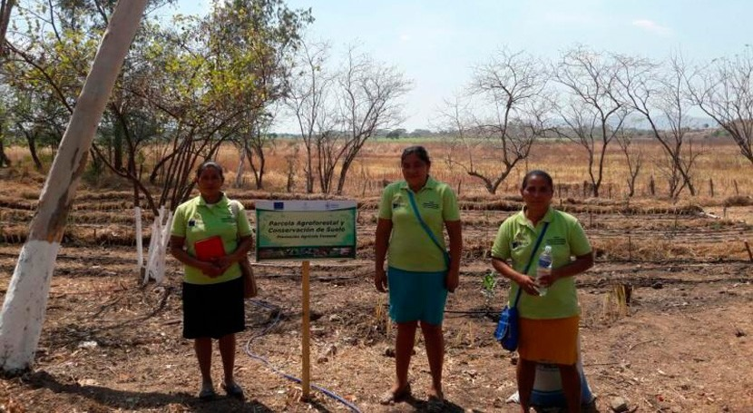 nuevo programa internacional ayudará familias afectadas Niño Honduras