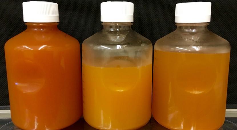 Frackibacter, bacteria descubierta pozos fracking