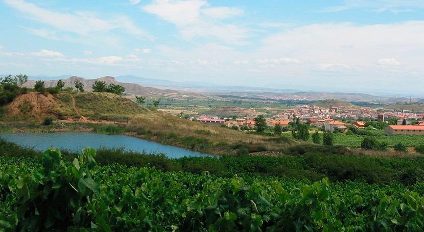 Regantes Campo Lorca contarán balsa regulación 106.000 metros cúbicos
