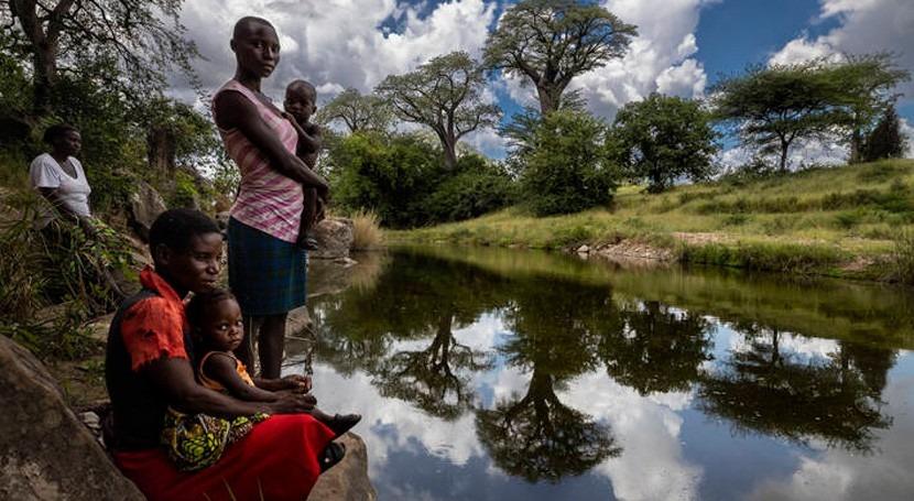 Naciones Unidas instan restauración naturaleza afrontar crisis climática