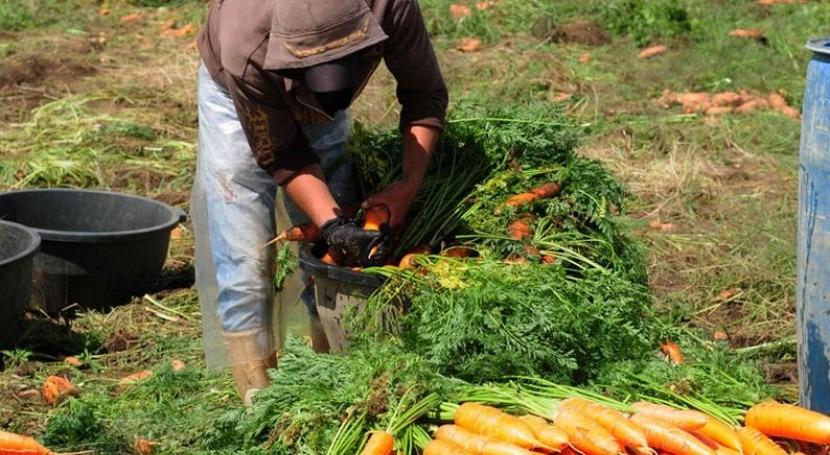 Un agricultor en Chimaltenango, Guatemala (Banco Mundial).