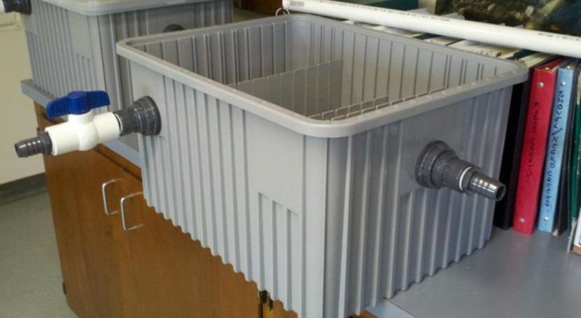 Protocolo monitoreo mejillón cebra y quagga biobox Ecowater Technologies