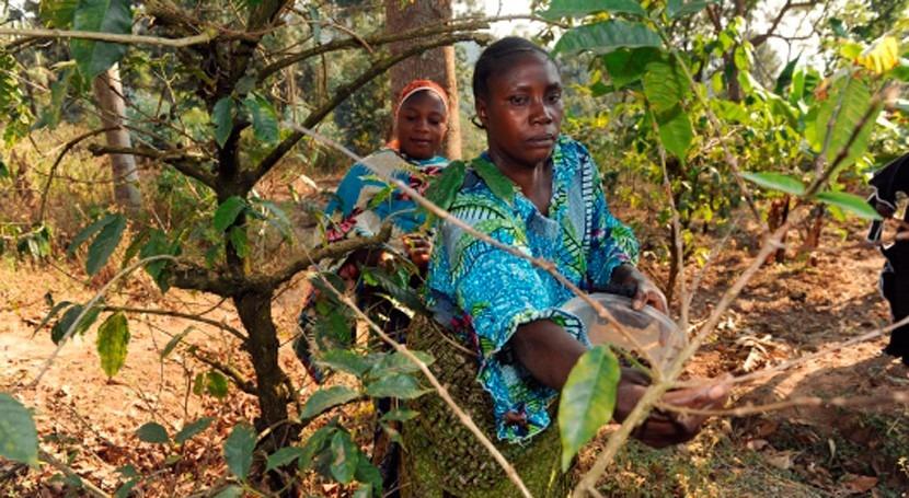 Reducir brecha bosques y agricultura, clave mejorar seguridad alimentaria