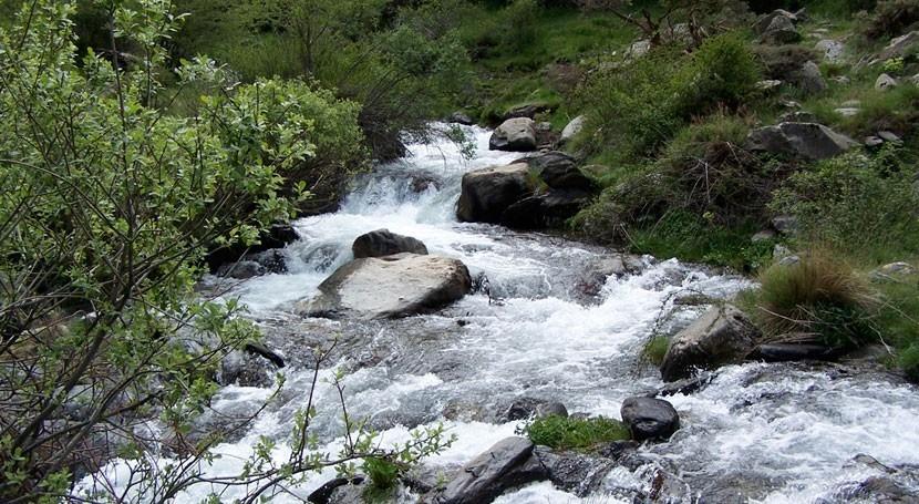 Retomado proceso naturalización río Genil paso Granada