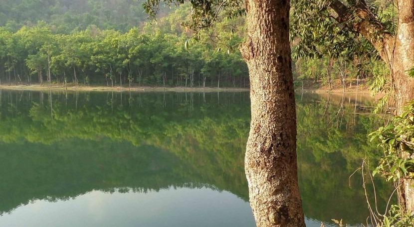 Proyecto Ramica: ¿Cómo mejorar seguimiento calidad aguas?