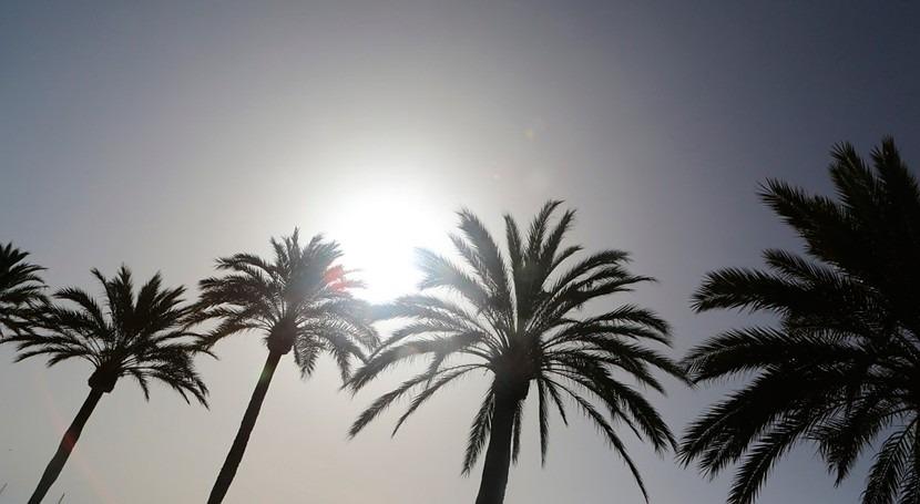 2018 España, noveno más cálido lo que llevamos siglo XXI