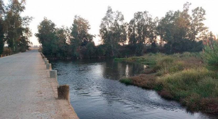 CHG finaliza trabajos retirada camalote tramo río Guadiana