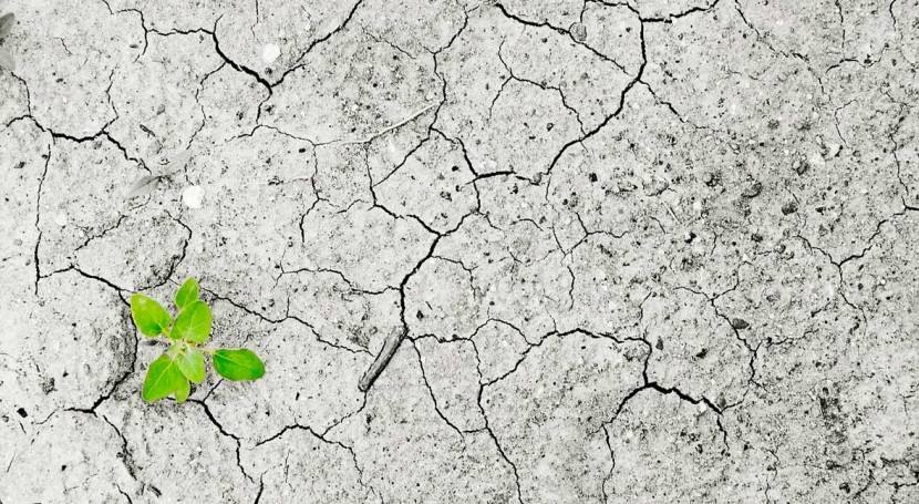 lucha cambio climático, prioridad agenda Gobierno español
