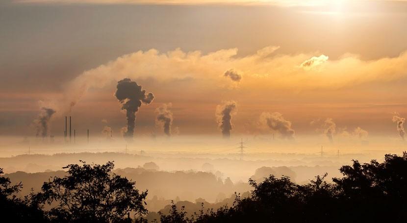 cambio climático hace que mortalidad aumente 4 % cada grado que sube temperatura