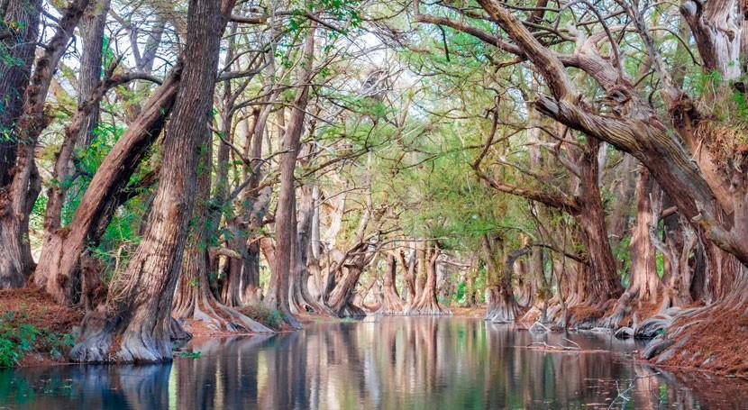 Leyendas agua México: Camécuaro, lago lágrimas