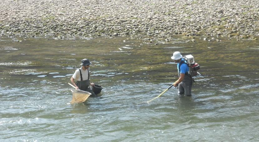 campaña muestreo sedimentos y peces, recta final